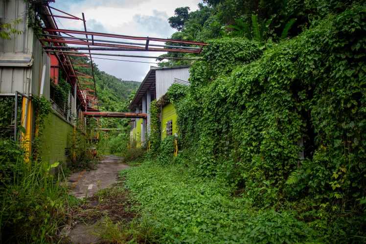 The abandoned brewery of Dominica Brewery & Beverages Limited damaged after Hurricane Maria.