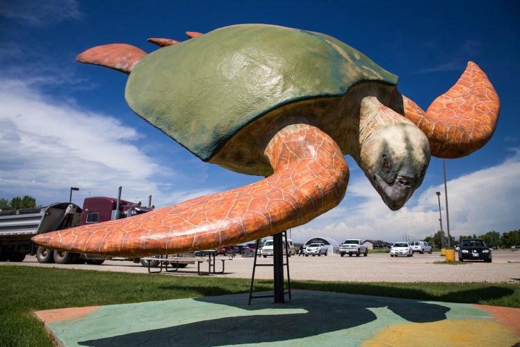 Giant Achelon Turtle Statue in Morden, Manitoba.