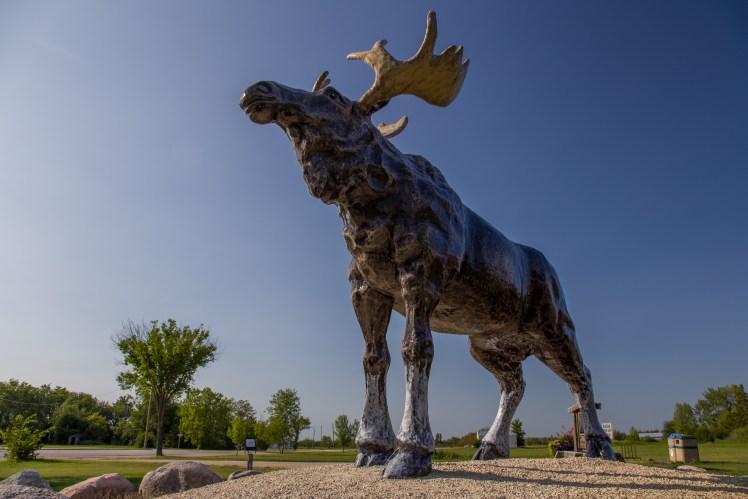 "Jokes aside, ""Lundi Moose"" is a wonderful moose statue created by artist Grant McLaughlin."
