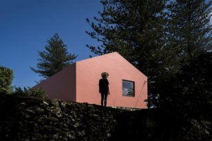 architecture-pink-house-03-768x512
