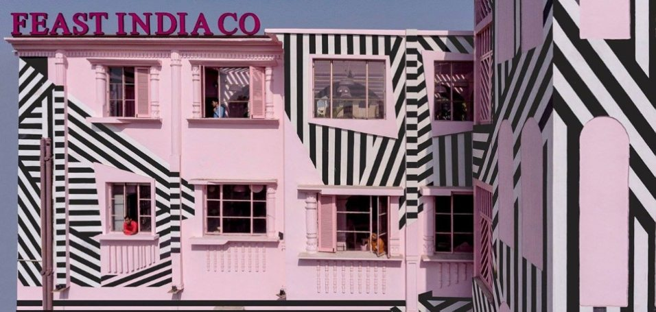 pink-zebra-