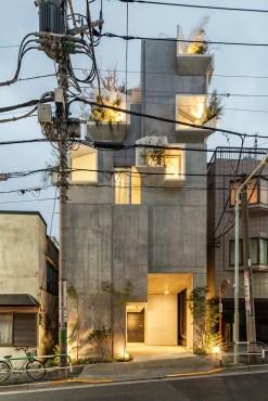 tree-ness-house-11