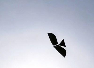 Raven III, il falco meccanico