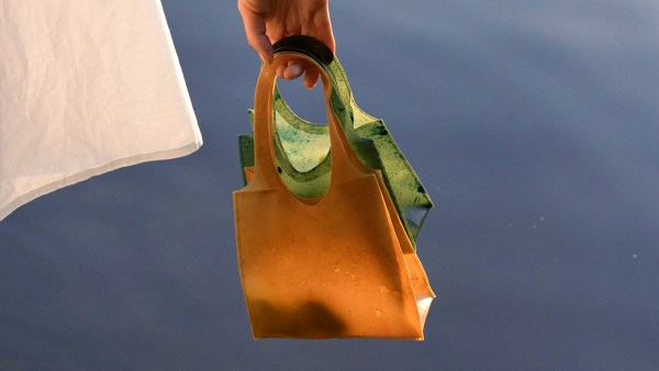 SONNET155, the biodegradable temporary handbag