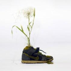 flowersgrowinginnike-2