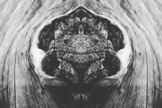 rorschachlandscapes-4