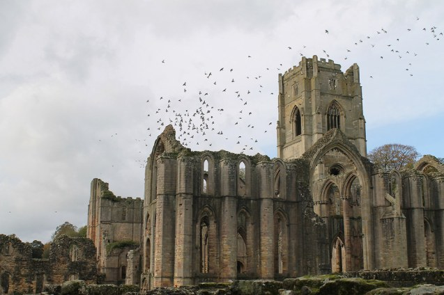 Fountains Abbey, Ripon