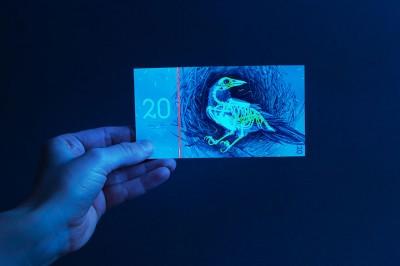 hungarian-money-concept-euro-barbara-bernat-3