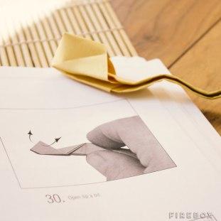 origamiforadults-3-640x640
