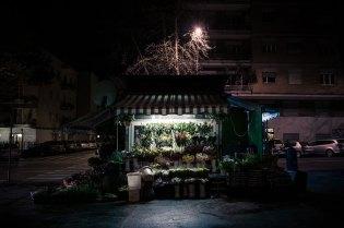 domus-03-fusco-fiori-24h