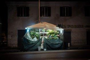 domus-09-fusco-fiori-24h