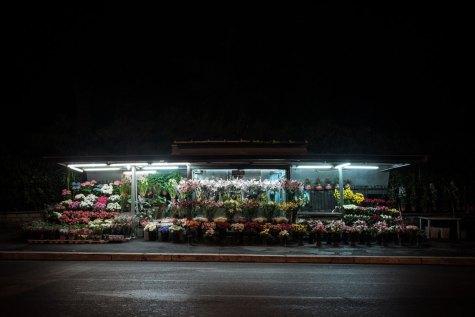 domus-13-fusco-fiori-24h