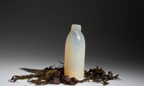 Algae-Water-Bottle-Biodegradable-1020x610