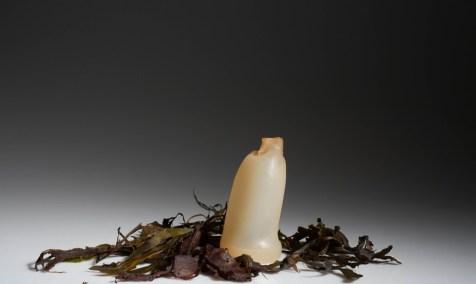 Algae-Water-Bottle-Break-Down-1020x610