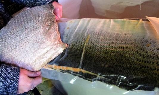 saumon-femer