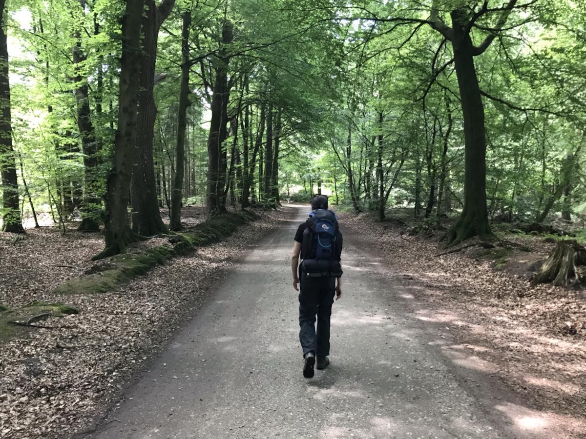 Og turen gik igennem en del skov idag inde Schleswig