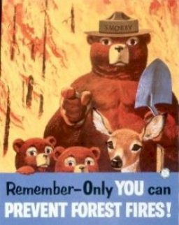 Image result for only you can prevent wildfires
