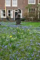 Bluebells in Begijnhof