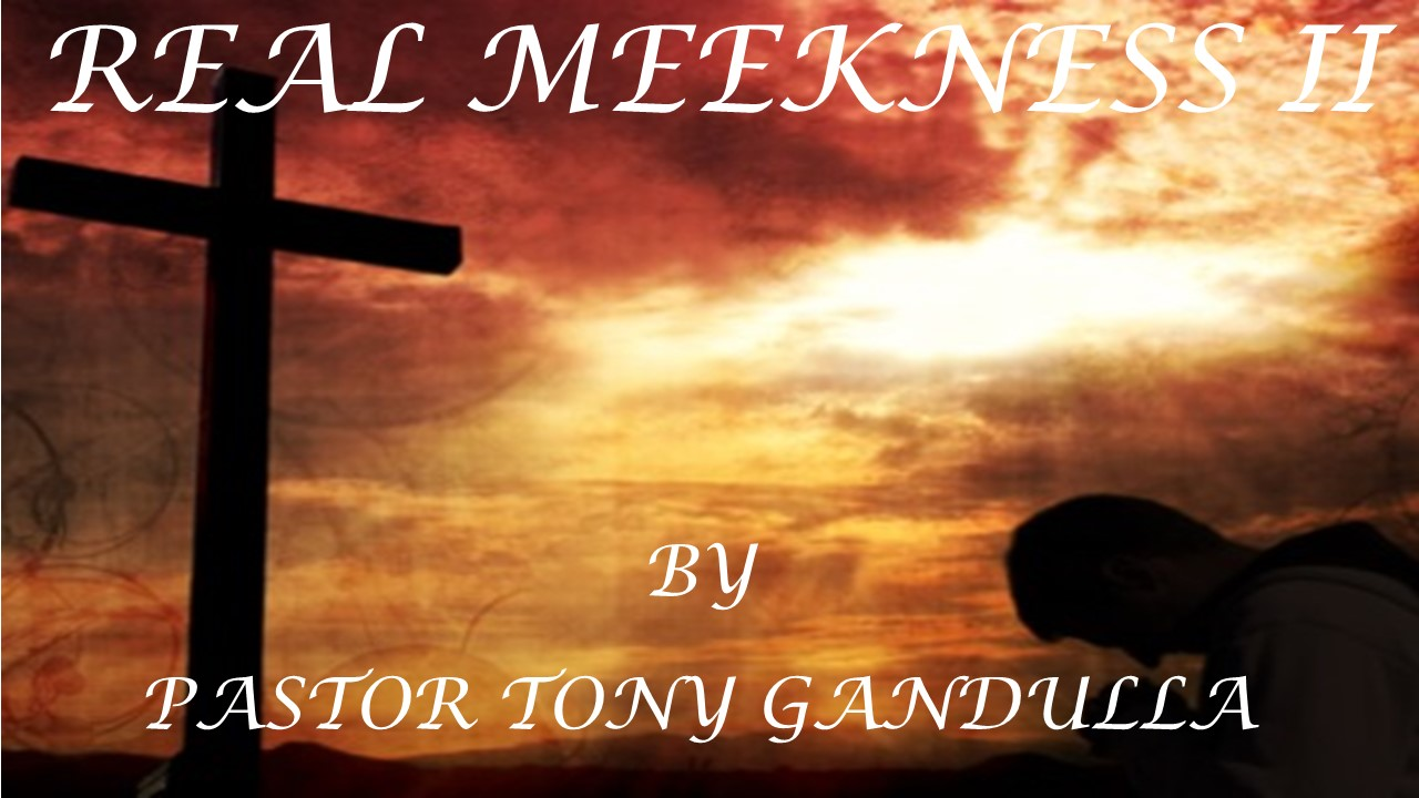 REAL MEEKNESS II