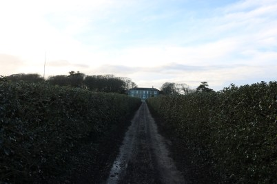 Ballytrent House 2017-03-02 16.15.31 (46)