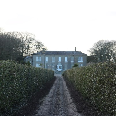 Ballytrent House 2017-03-02 16.15.31 (48)