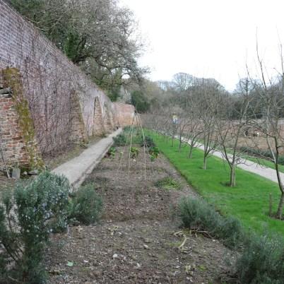 Colclough Gardens, Tintern Abbey 2017-02-21 14.58.35 (16)