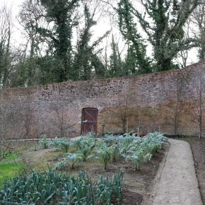 Colclough Gardens, Tintern Abbey 2017-02-21 14.58.35 (17)