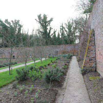 Colclough Gardens, Tintern Abbey 2017-02-21 14.58.35 (19)