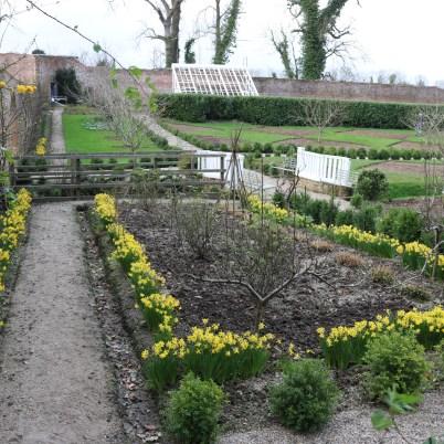 Colclough Gardens, Tintern Abbey 2017-02-21 14.58.35 (27)
