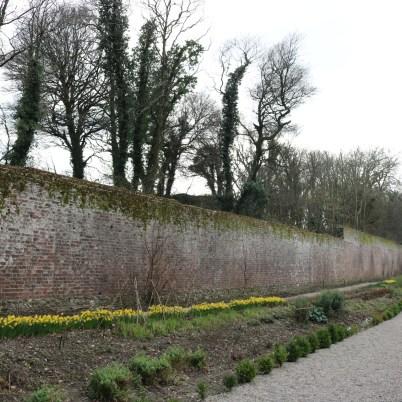Colclough Gardens, Tintern Abbey 2017-02-21 14.58.35 (32)
