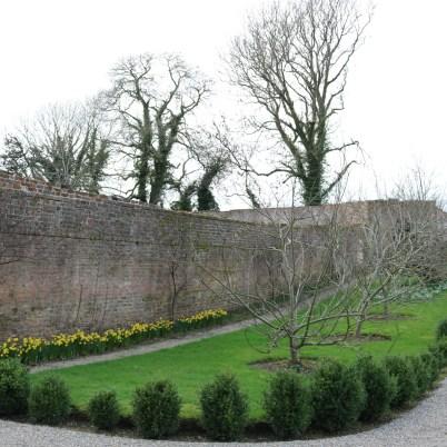 Colclough Gardens, Tintern Abbey 2017-02-21 14.58.35 (7)