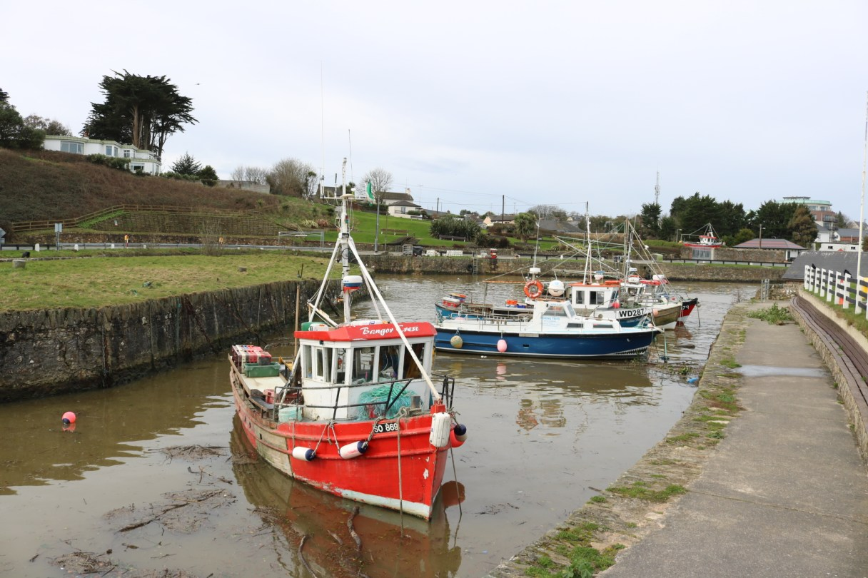 Courtown Harbour 2017-03-02 11.44.26 (6)