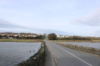 Fethard-On-Sea 2017-02-21 13.49.26 (2)
