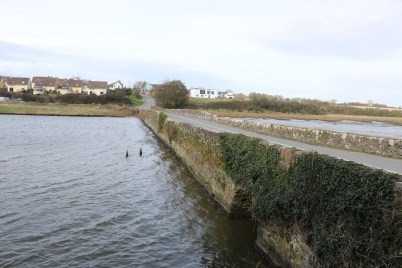 Fethard-On-Sea 2017-02-21 13.49.26 (3)