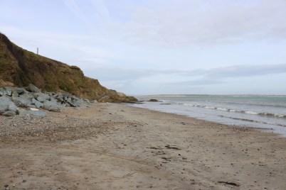 Grange Beach, Fethard 2017-02-21 14.11.43 (3)