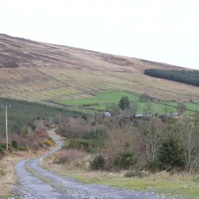 Mount Leinster Ballycrystal Blackstairs Mountains 2017-03-09 (10)