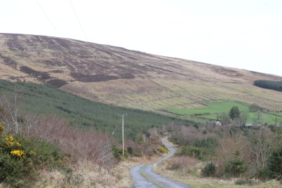 Mount Leinster Ballycrystal Blackstairs Mountains 2017-03-09 (11)