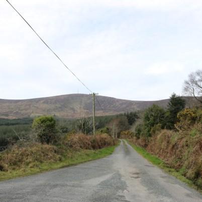 Mount Leinster Ballycrystal Blackstairs Mountains 2017-03-09 (2)