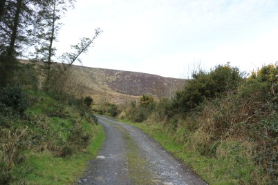 Mount Leinster Ballycrystal Blackstairs Mountains 2017-03-09 (4)