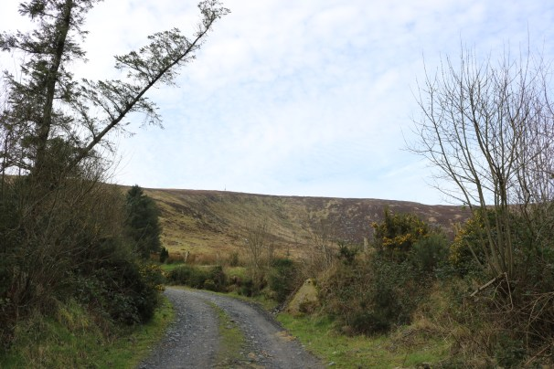 Mount Leinster Ballycrystal Blackstairs Mountains 2017-03-09 (5)