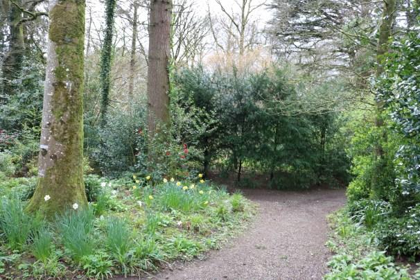 Newtownbarry Gardens Bunclody 2017-03-28 13.07.02 (28)