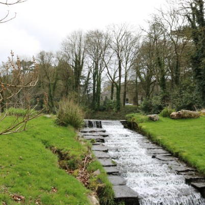 Newtownbarry Gardens Bunclody 2017-03-28 13.07.02 (3)