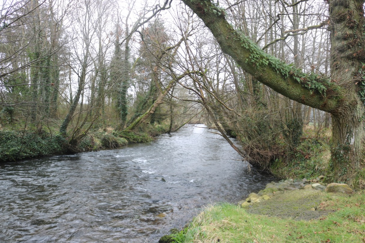 Owenduff River 2017-02-22 (4)