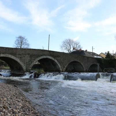 Slaney River Clohamon 2017-03-02 (10)