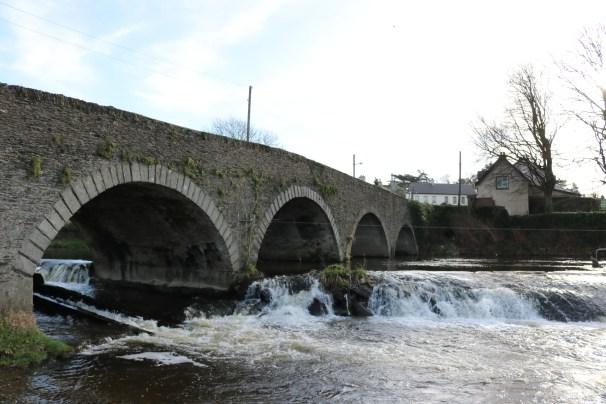 Slaney River Clohamon 2017-03-02 (11)