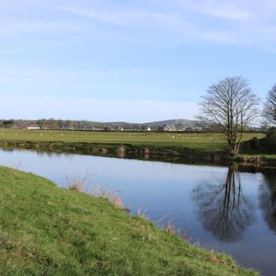 Slaney River Clohamon 2017-03-02 (12)