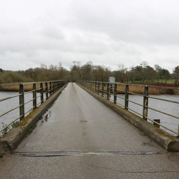Slaney River, Edermine 2017-03-10 (11)