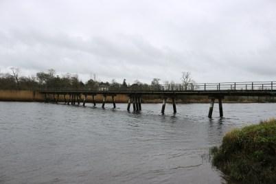 Slaney River, Edermine 2017-03-10 (2)