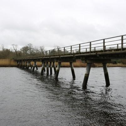 Slaney River, Edermine 2017-03-10 (3)