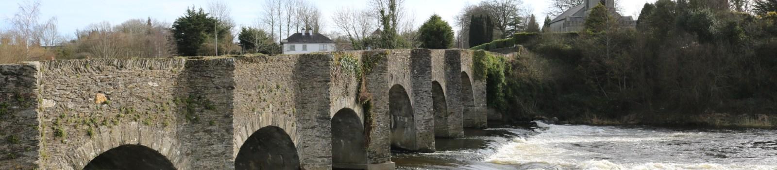 Slaney River, Ballycarney